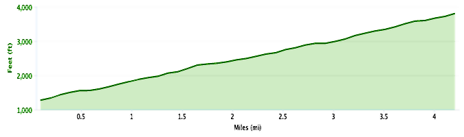 race to the top of vermont elevation profile